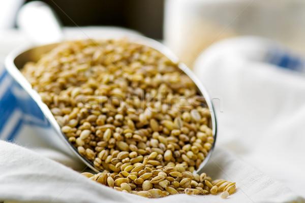 barley groats in a metal shovel.  Stock photo © zoryanchik