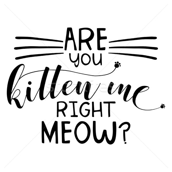 Are you kitten me right meow? funny saying Stock photo © Zsuskaa
