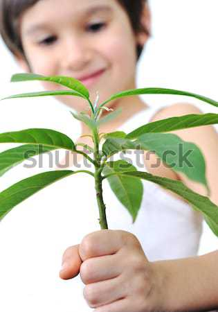 Stock photo: Father and son carefuly cultivating a plant