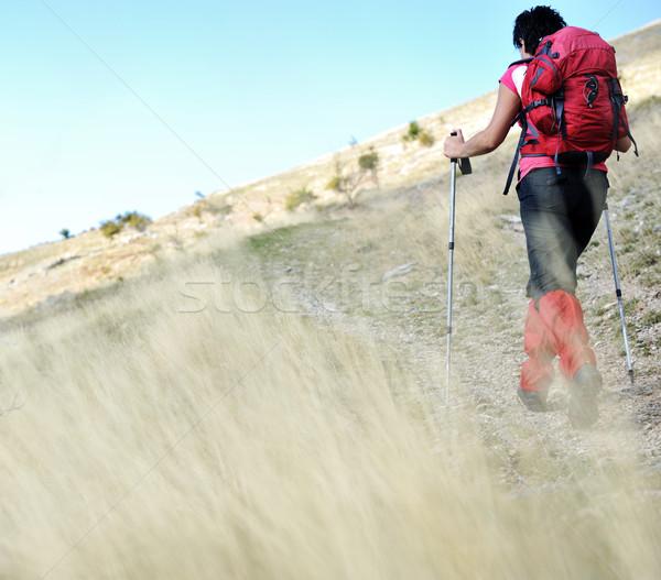 Nordic Walking at mountains, hiking woman in grass Stock photo © zurijeta