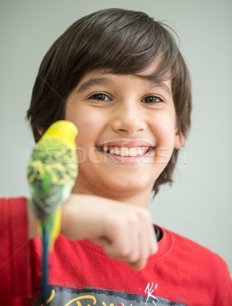 Kid spelen huisdier papegaai vogel Blauw Stockfoto © zurijeta