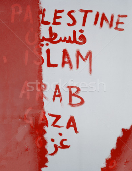Conceptual image of wiping out the Palestine from the map Stock photo © zurijeta