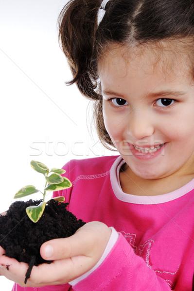 Ninos nina árbol mano feliz hoja Foto stock © zurijeta
