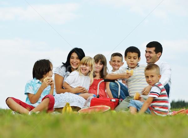 Foto stock: Família · crianças · piquenique · tempo · verde · prado