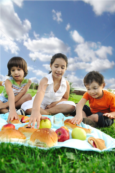 Small group of children eating together in nature, picnic, beautiful scene Stock photo © zurijeta