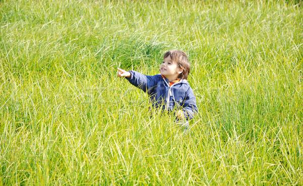 Happy childhood, outdoor, nature scene Stock photo © zurijeta