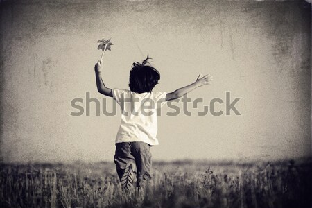 Vintage colorized filtered image of a boy running on summer fiel Stock photo © zurijeta