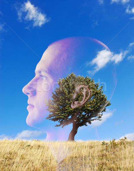 Człowiek drzewo dziedzinie podwoić ekspozycja niebo Zdjęcia stock © zurijeta