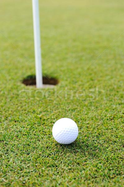 Golf topu yeşil ot ağaç golf spor manzara Stok fotoğraf © zurijeta