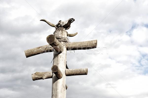 Totem with scull Stock photo © zurijeta
