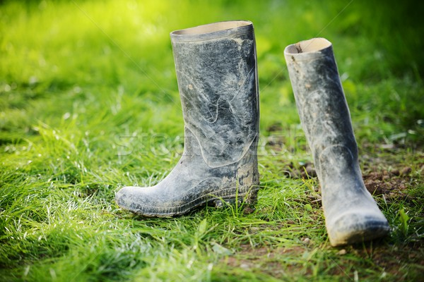 Wellington dirty boots on meadow grass Stock photo © zurijeta