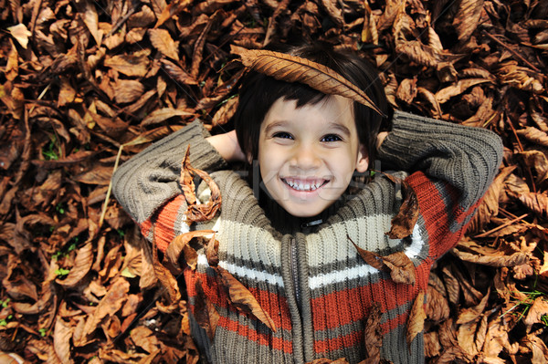 a little child playing in the autumn leaves Stock photo © zurijeta
