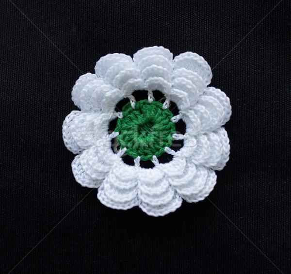 Srebrenica flower, symbol for massacre in that city in Bosnia Stock photo © zurijeta