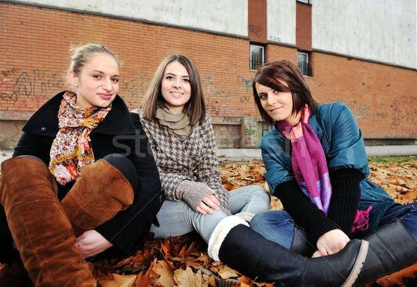 Groep vrienden park samen vrouw huis Stockfoto © zurijeta