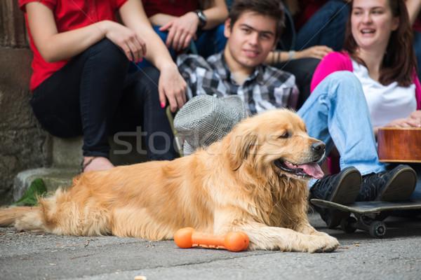 Dog sitting with young people Stock photo © zurijeta