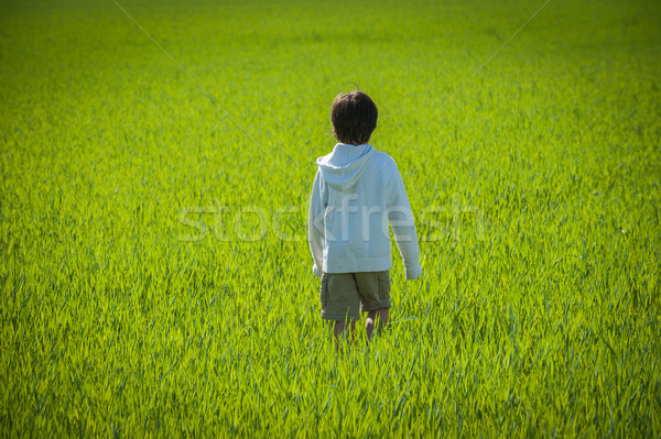 Lopen kid groene Geel grasveld familie Stockfoto © zurijeta