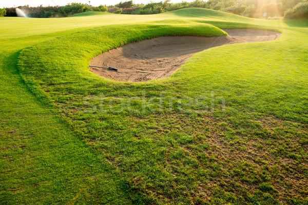 Green grass background Stock photo © zurijeta