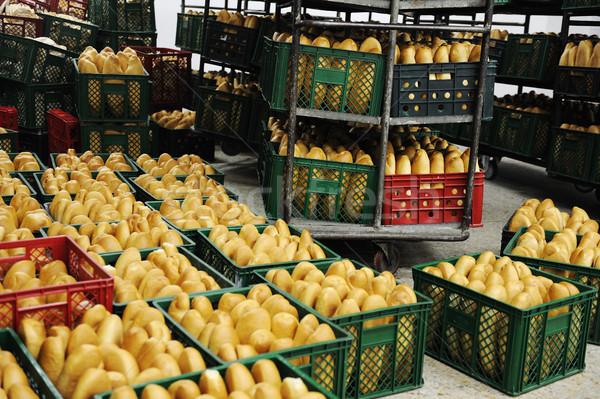 Bread factory Stock photo © zurijeta