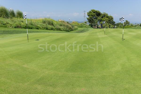 гольф воды гольф природы пейзаж зеленый Сток-фото © zurijeta