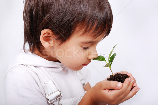 Little cute child holding green plant in hands  Stock photo © zurijeta