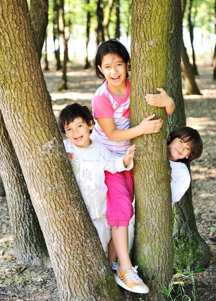 Kid verbergen hout natuur zomer portret Stockfoto © zurijeta