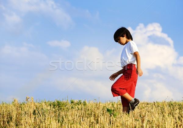 Gyerek boldog gondtalan idő citromsárga búzamező Stock fotó © zurijeta