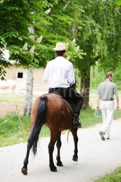 Jóvenes elegante hombre toma equitación caballo Foto stock © zurijeta
