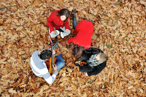 Gençler arkadaşlar oynama gitar sonbahar park Stok fotoğraf © zurijeta