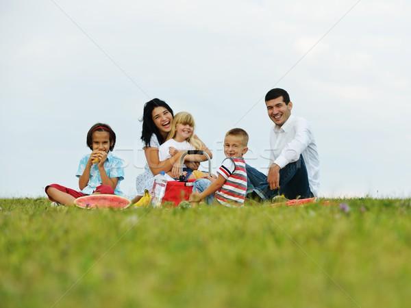 Stockfoto: Familie · kinderen · picknick · tijd · groene · weide