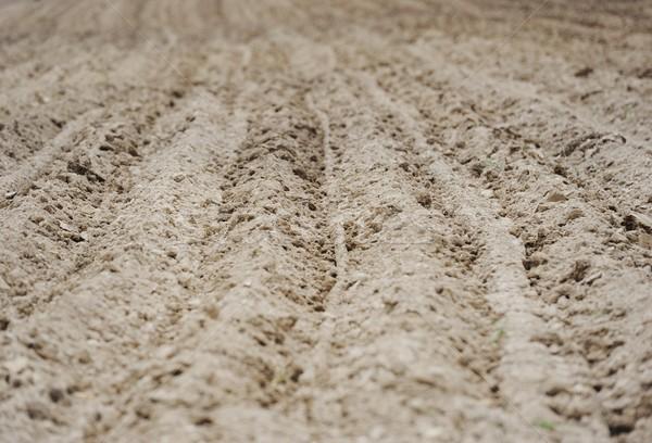 Ploughed field Stock photo © zurijeta