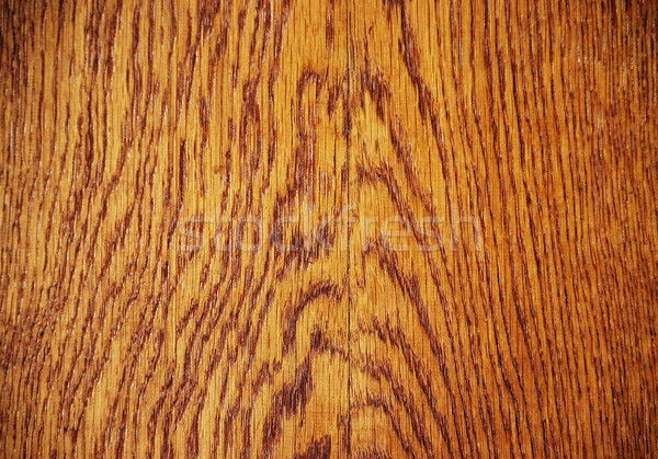興味深い 木材 森林 抽象的な ストックフォト © zurijeta