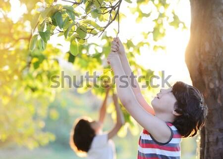 Gelukkig kid buitenshuis natuur goede tijd Stockfoto © zurijeta