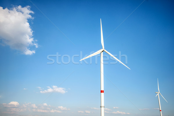 Blauwe hemel permanente heldere wolken groene Stockfoto © zurijeta
