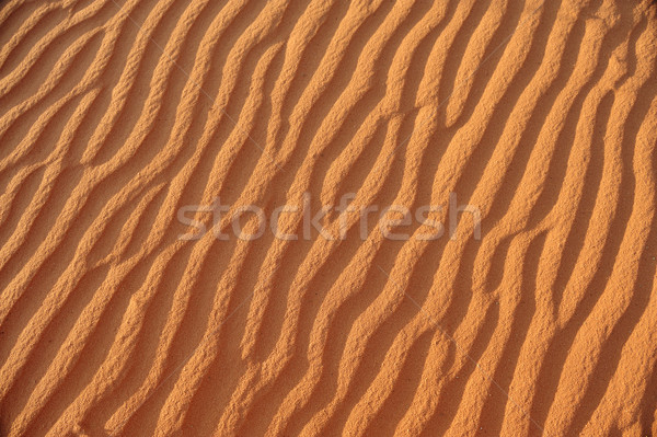 Beautiful wave patterns found in a sand dune in the desert Stock photo © zurijeta