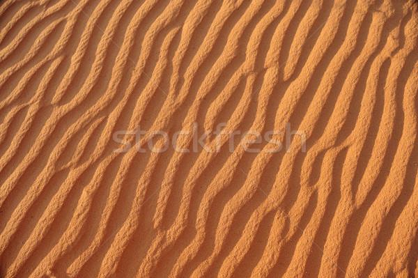 Hermosa ola patrones duna desierto diseno Foto stock © zurijeta