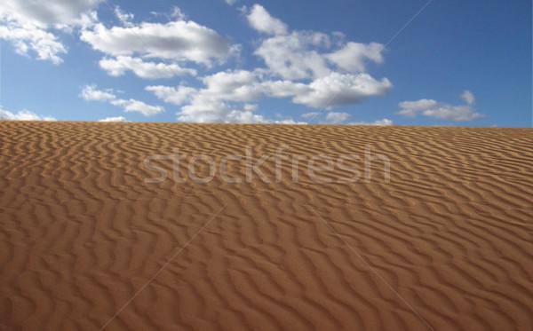 Sand Desert with Dunes Stock photo © zurijeta