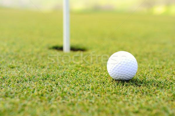 Golfbal gat grasveld Stockfoto © zurijeta