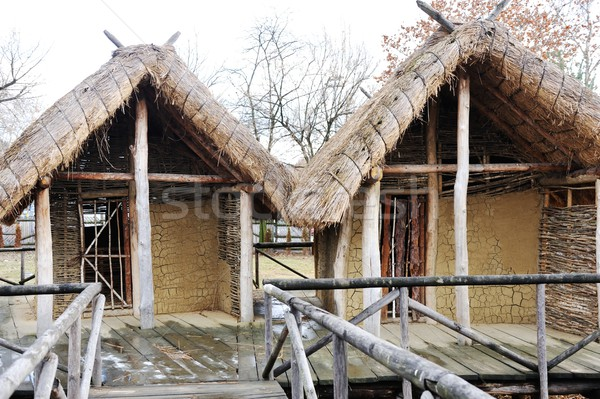 Old authentic village with wooden houses and straw on roof Stock photo © zurijeta
