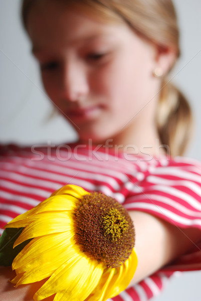 Stock photo: Melancholy on scene, cute girl with dry sunflower