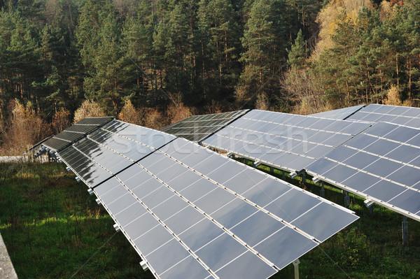 太陽光発電 ソーラーパネル 草 森林 太陽 技術 ストックフォト © zurijeta