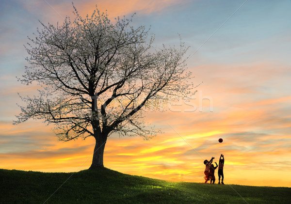 Children playing on beautiful meadow with tree Stock photo © zurijeta