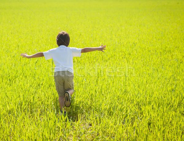 Lopen mooie groene Geel grasveld Stockfoto © zurijeta