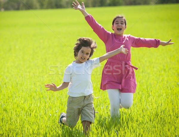 два счастливым дети зеленый пшеницы семьи Сток-фото © zurijeta