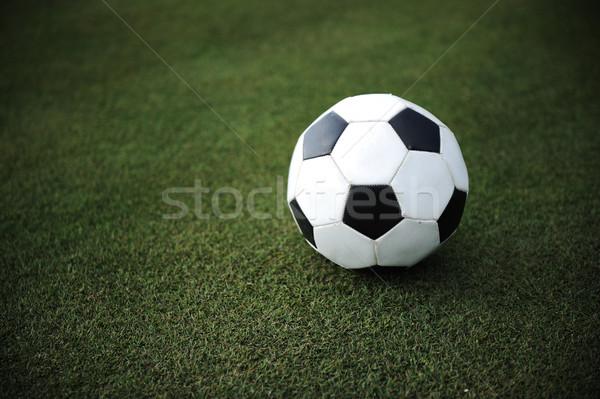 Football on grass Stock photo © zurijeta