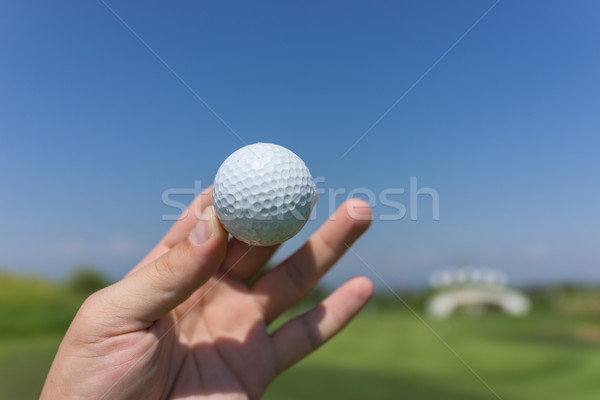 Holding golf ball in hand Stock photo © zurijeta