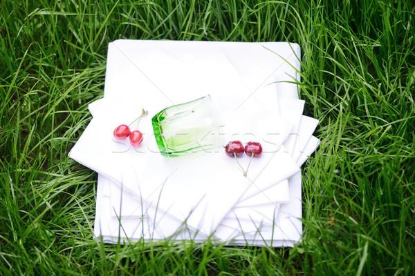 Bedsheet on grass Stock photo © zurijeta
