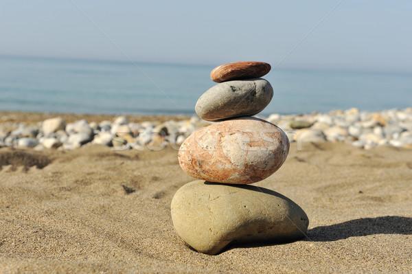 Balance in nature Stock photo © zurijeta