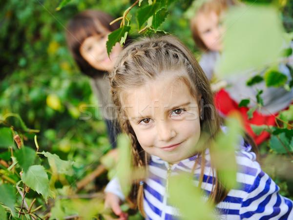 Aire libre feliz caras hojas árboles forestales Foto stock © zurijeta
