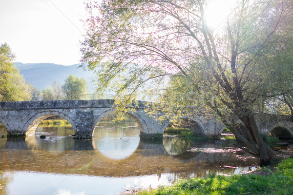 Old bridge on the river with ancient arch Stock photo © zurijeta