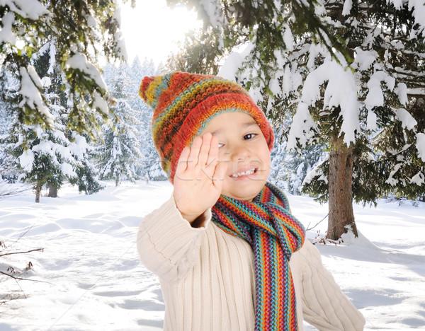 Zimą szczęścia drzewo szczęśliwy lasu dziecko Zdjęcia stock © zurijeta